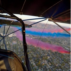 Color_Gender_Reveal_San_Diego_and_Los_Angeles.JPG